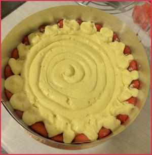 fraisier etp19